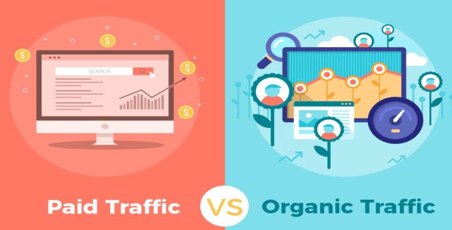 Paid Traffiv VS Organic Traffic